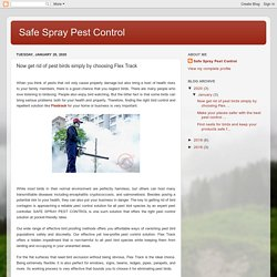 Safe Spray Pest Control: Now get rid of pest birds simply by choosing Flex Track