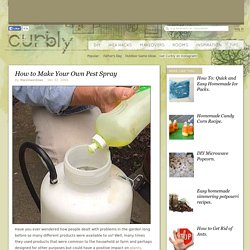 How to Make Your Own Pest Spray » Curbly