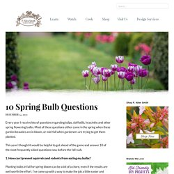10 Spring Bulb Questions - P. Allen Smith