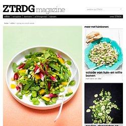 spring succotash salade - ZTRDG
