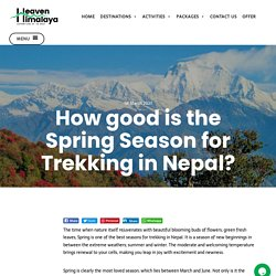 How good is the Spring Season for Trekking in Nepal? - Heaven Himalaya