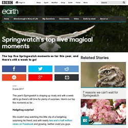Earth - Springwatch's top five magical moments