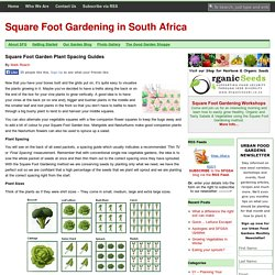 Square Foot Garden Plant Spacing Guides
