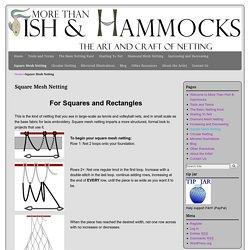 More than Fish and Hammocks