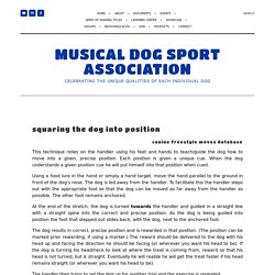 002 03 Squaring the Dog — Musical Dog Sport Association
