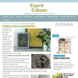 Feuilles d'arbres squelettisées, Esprit Cabane, idees creatives et ecologiques