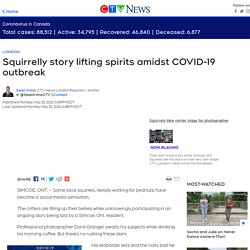 Squirrelly story lifting spirits amidst COVID-19 outbreak