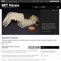 Squishy robots