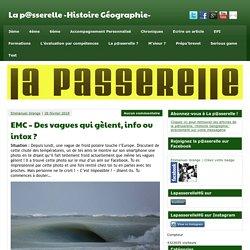 EMC - Des vagues qui gèlent, info ou intox ? - La p@sserelle -Histoire Géographie-