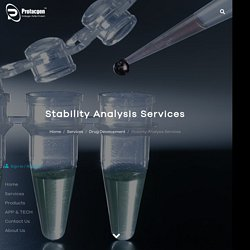 Stability Analysis Services
