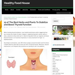 15 of The Best Herbs and Plants To Stabilize and Boost Thyroid Function