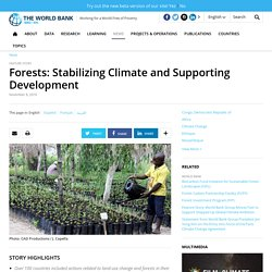 Forests: Stabilizing Climate and Supporting Development