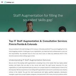 Staff Agumentation