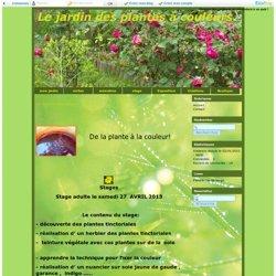 stages - Le jardin des plantes à couleurs