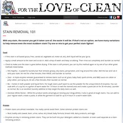Stain Removal 101 – For the Love of Clean