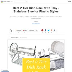 Best 2 Tier Dish Rack with Tray - Stainless Steel or Plastic Styles