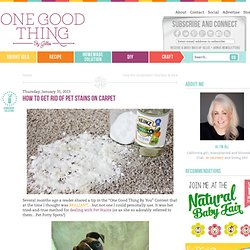 How To Get Rid of Pet Stains On CarpetOne Good Thing by Jillee