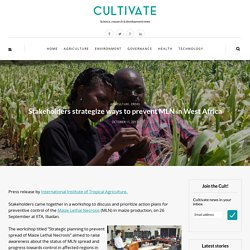 CULTIVATE 11/10/17 Stakeholders strategize ways to prevent MLN in West Africa