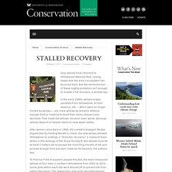 Stalled Recovery