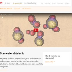 Stamceller räddar liv