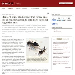 students discover that native ants use chemical weapon to turn back invading Argentine ants