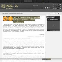 INRA 05/10/16 Staphylocoque doré : décryptage d'une stratégie de résistance à certains antimicrobiens