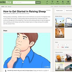 How to Get Started in Raising Sheep: 12 steps