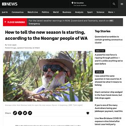 How to tell the new season is starting, according to the Noongar people of WA