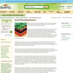 Seed Starting Basics - Gardening Tips and Advice from Burpee