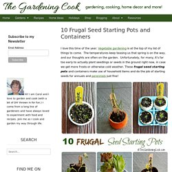 Frugal Seed Starting Pots and Containers - 10 Creative Ideas