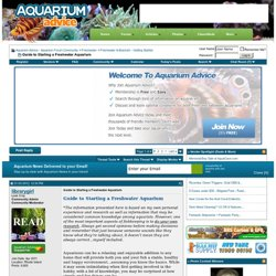 Guide to Starting a Freshwater Aquarium - Aquarium Advice - Aquarium Forum Community