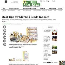 Best Tips for Starting Seeds Indoors - Organic Gardening