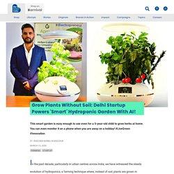 Delhi Startup Powers 'Smart' Hydroponic Garden With AI!