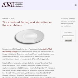The effects of fasting and starvation on the microbiome — The American Microbiome Institute