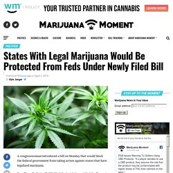 States With Legal Marijuana Would Be Protected From Feds Under Newly Filed Bill