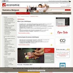 Statbel - Direction générale Statistique et Information économique du Gouvernement fédéral belge
