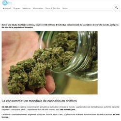 Cannabis : Chiffres et statistiques