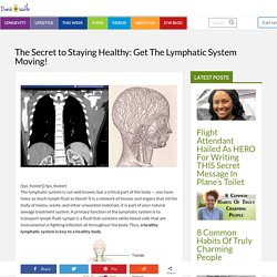 The Secret to Staying Healthy: Get The Lymphatic System Moving! - David Avocado Wolfe