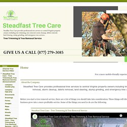 Steadfast Tree Care - Tree Trimming & Tree Removal Service
