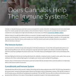 Steady Care Medical - Does Cannabis Help The Immune System?