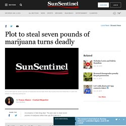 Plot to steal seven pounds of marijuana turns deadly