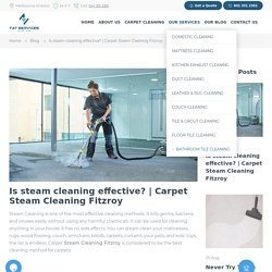 steam cleaning fitzroy