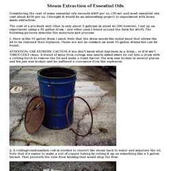 Steam Extraction of Essential Oils