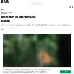 Stedsans: En international succes