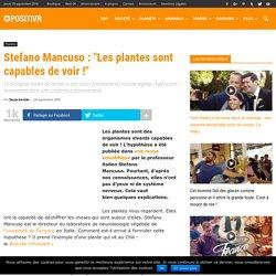 """Stefano Mancuso : """"Les plantes sont capables de voir !"""""""