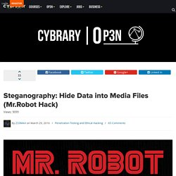 Steganography: Hide Data into Media Files (Mr.Robot Hack)