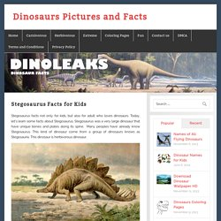 Dinosaurs Pictures and Facts