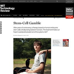Stem-Cell Gamble