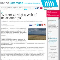 """A Stem Cord of a Web of Relationships"""