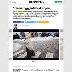 Stenen i ryggen blev droppen - Sverige - Sydsvenskan - Nyheter dygnet runt